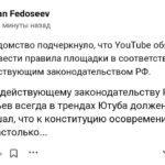 Роскомнадзор на службе ботовода-Соловьёва