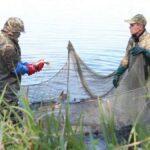 Минсельхоз узаконит рыбное браконьерство
