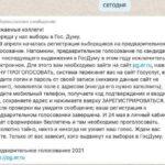 Безумие и праймериз Единой России